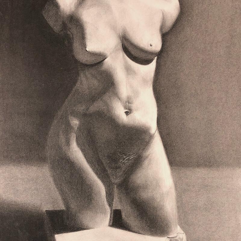 Torso Statue Study - Charcoal