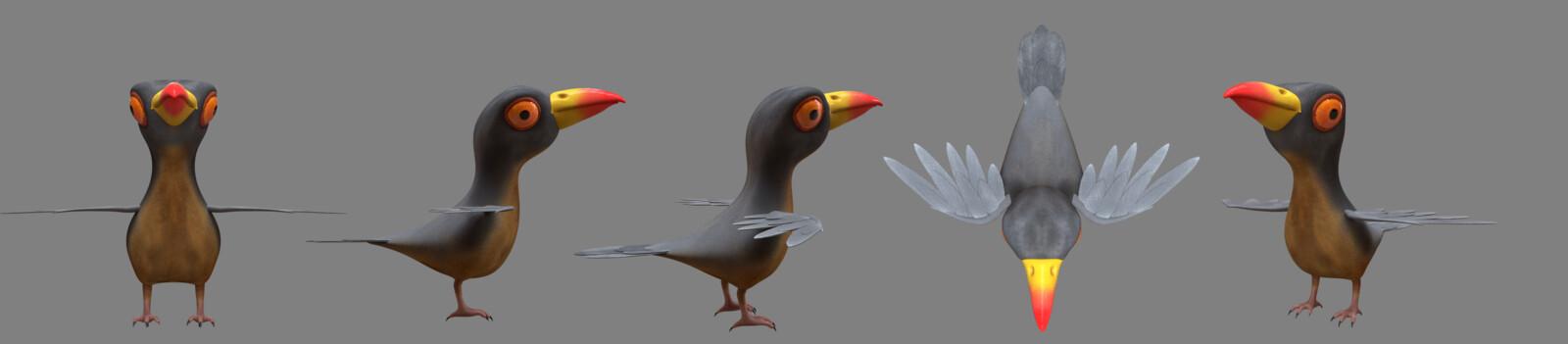 Profile Shots of the Oxpecker.