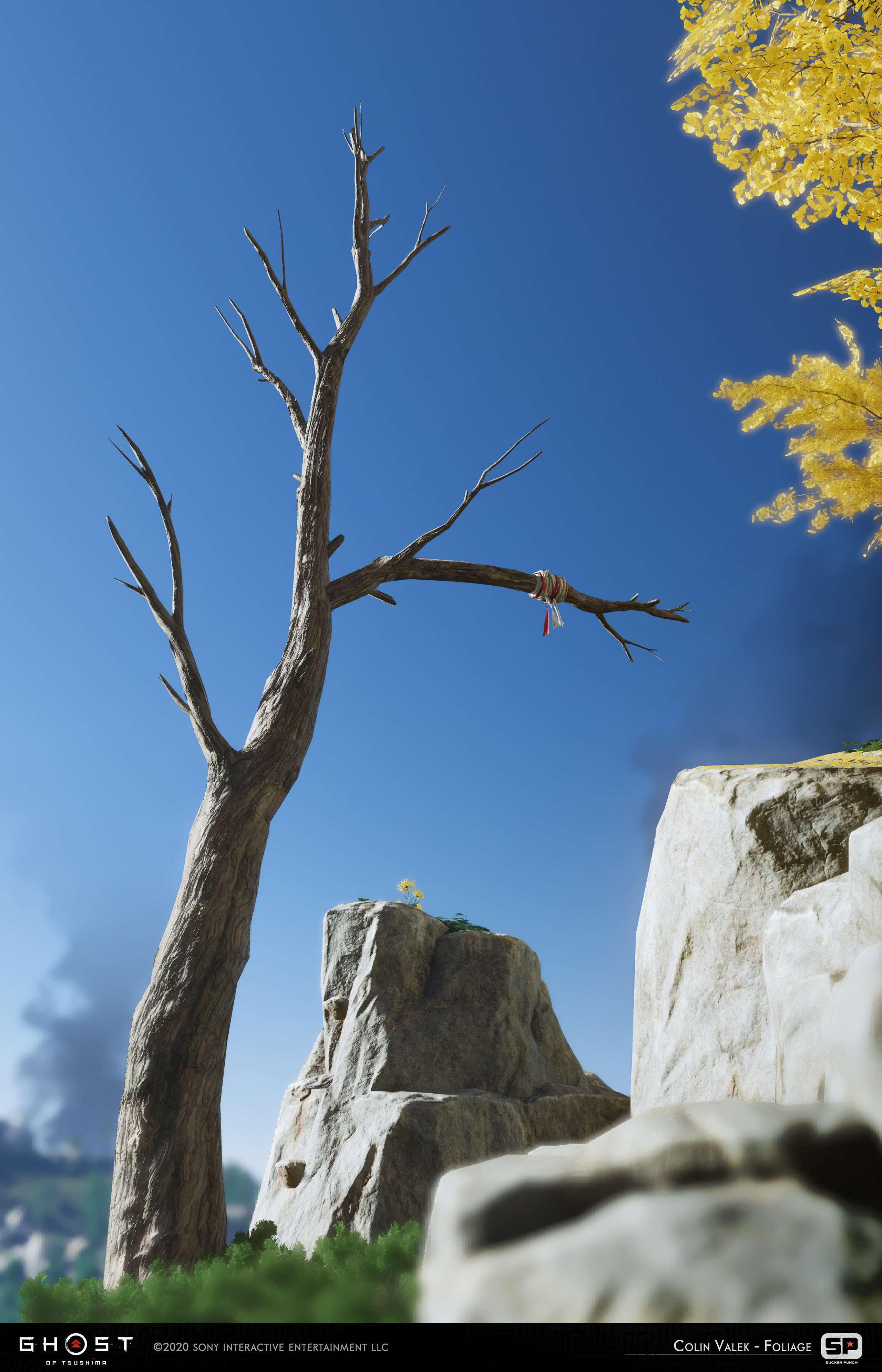 Dead tree used for grappling
