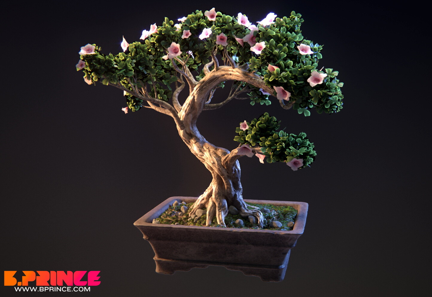 Animated Bonsai Tree