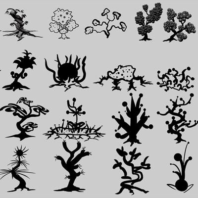 Daniel melendez boelian plant concepts