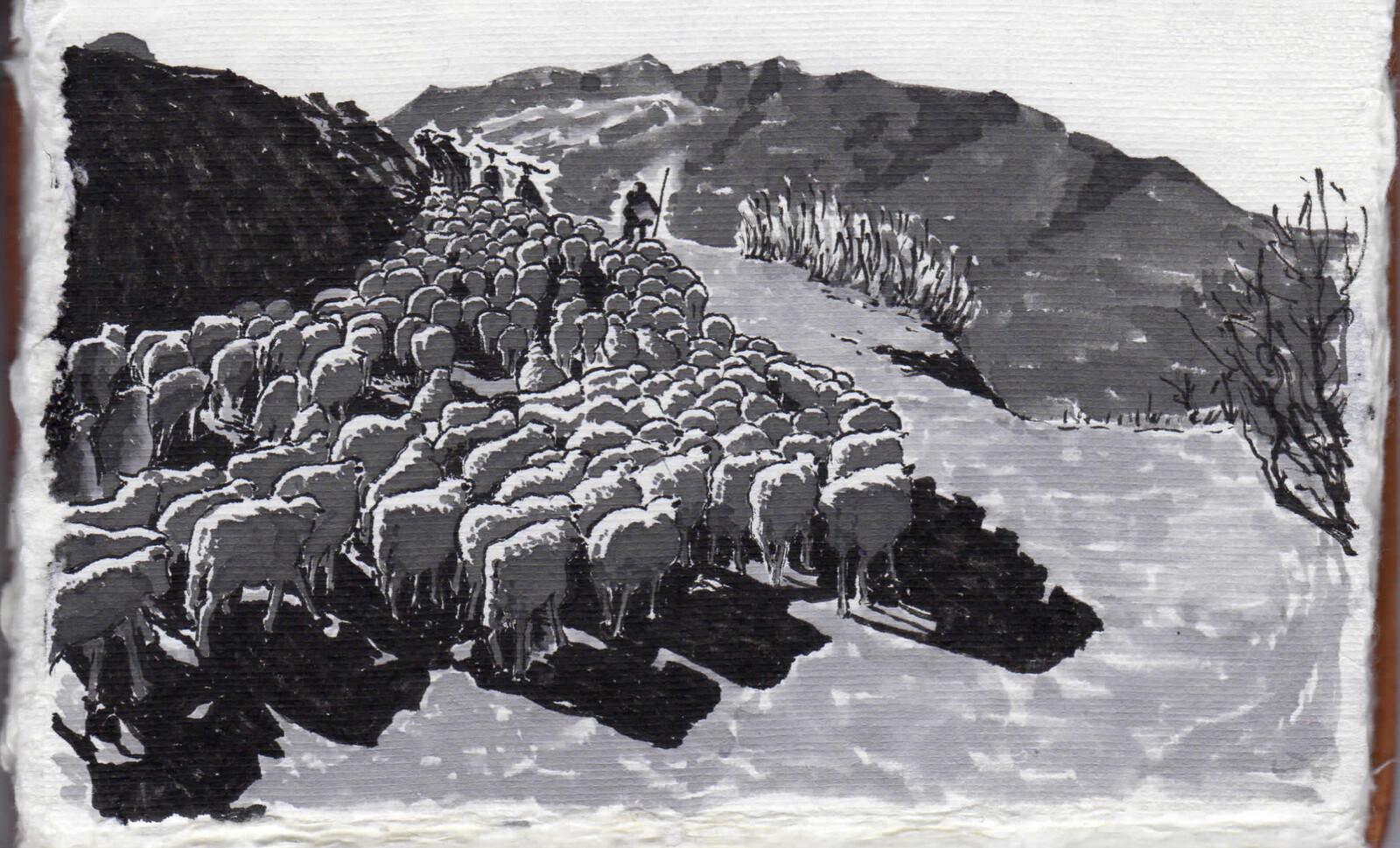 Sheep & Mountain