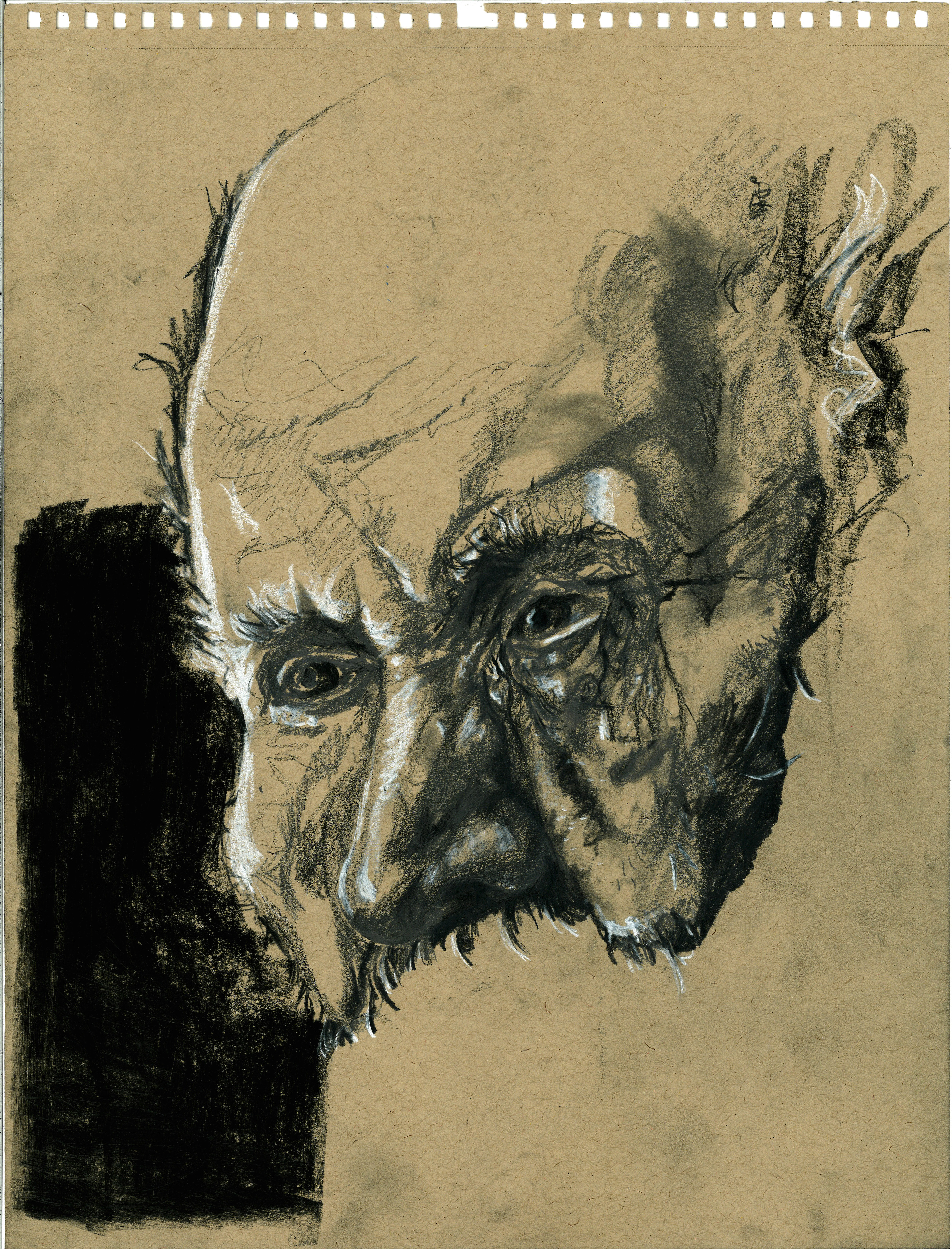 Pensive; Charcoal, Lead, Graphite - multiple mediums on tan sketch paper