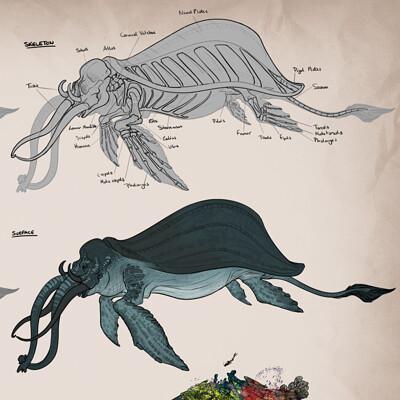 Amanda blatch amandablatch creatureanatomy sealaphant