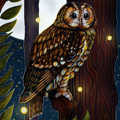 Samantha josephine burrow tawny owl moonlit perch