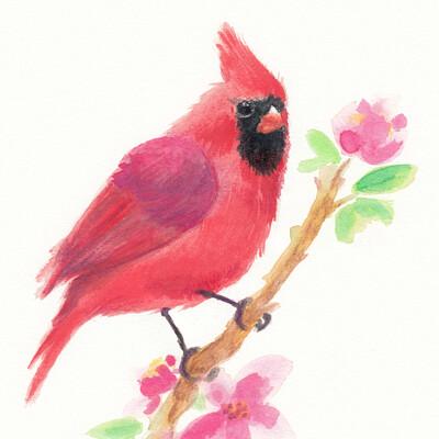Marie sanginesi cardinal small