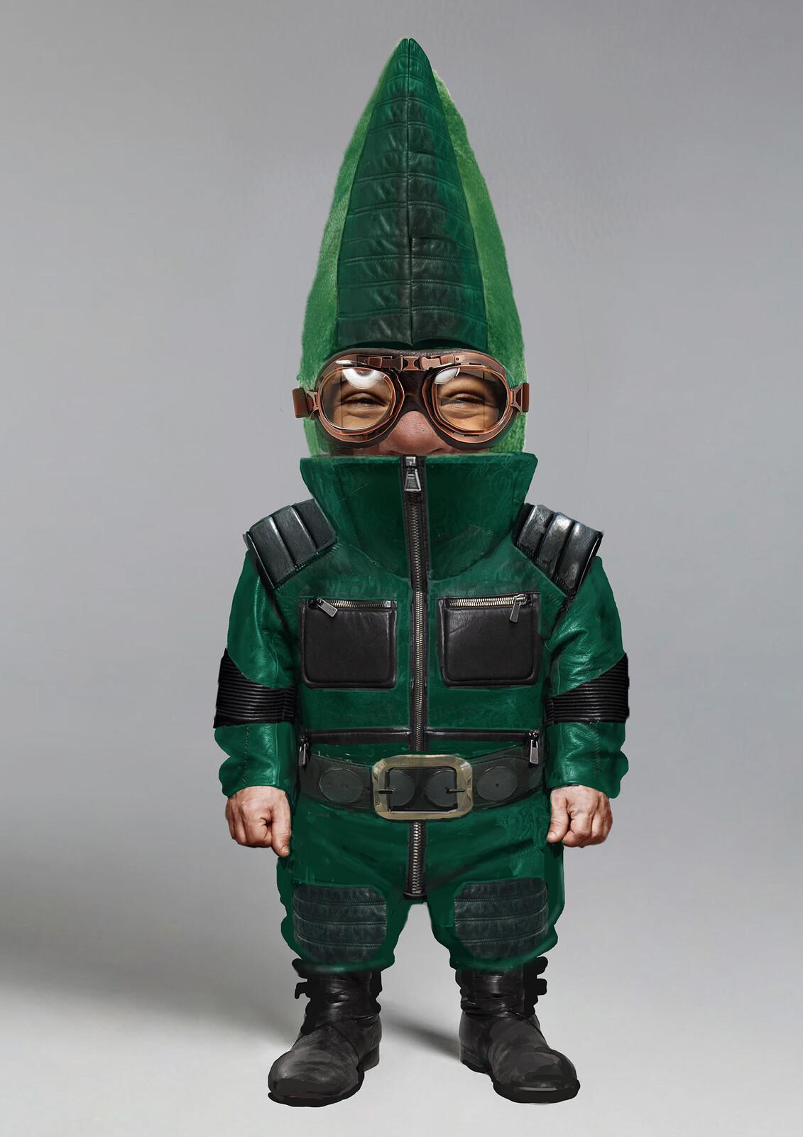 Dwarf Gnomes