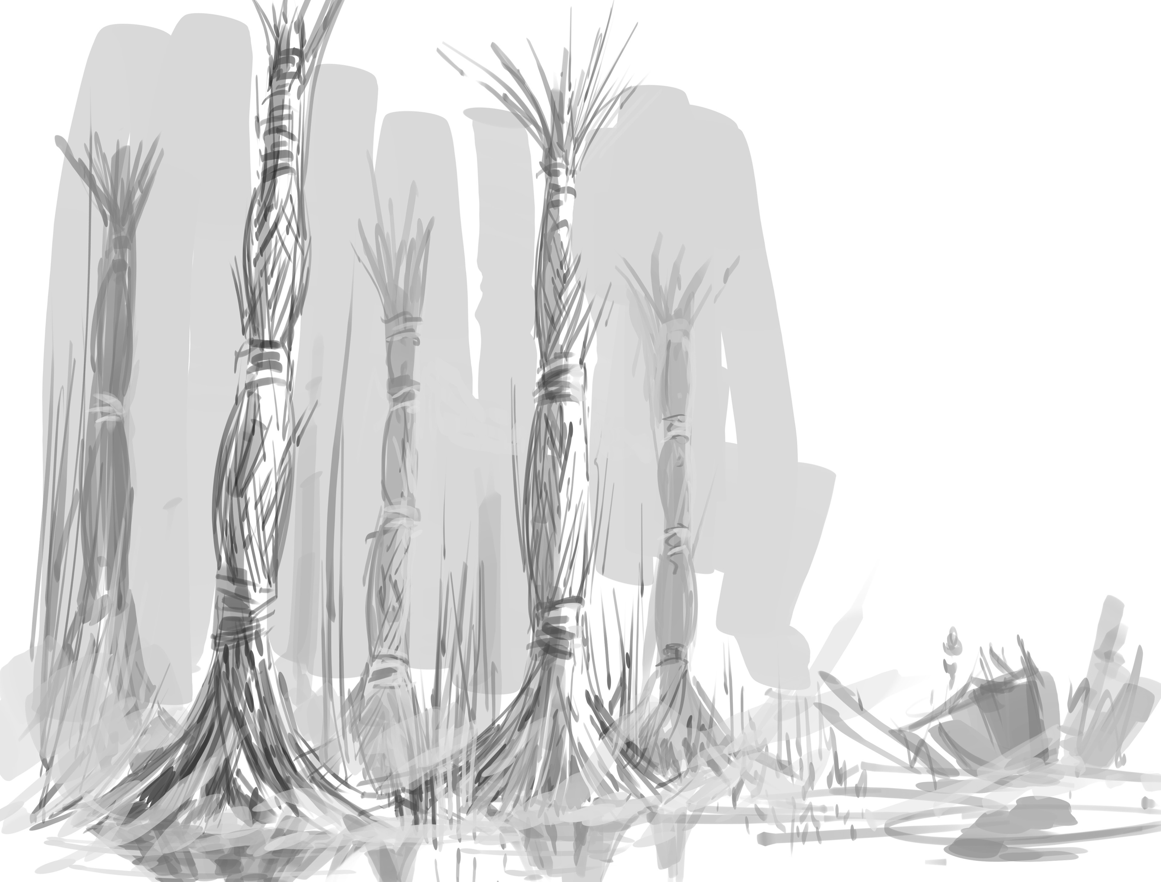 A quick sketch of how the tall reeds might be bundled.