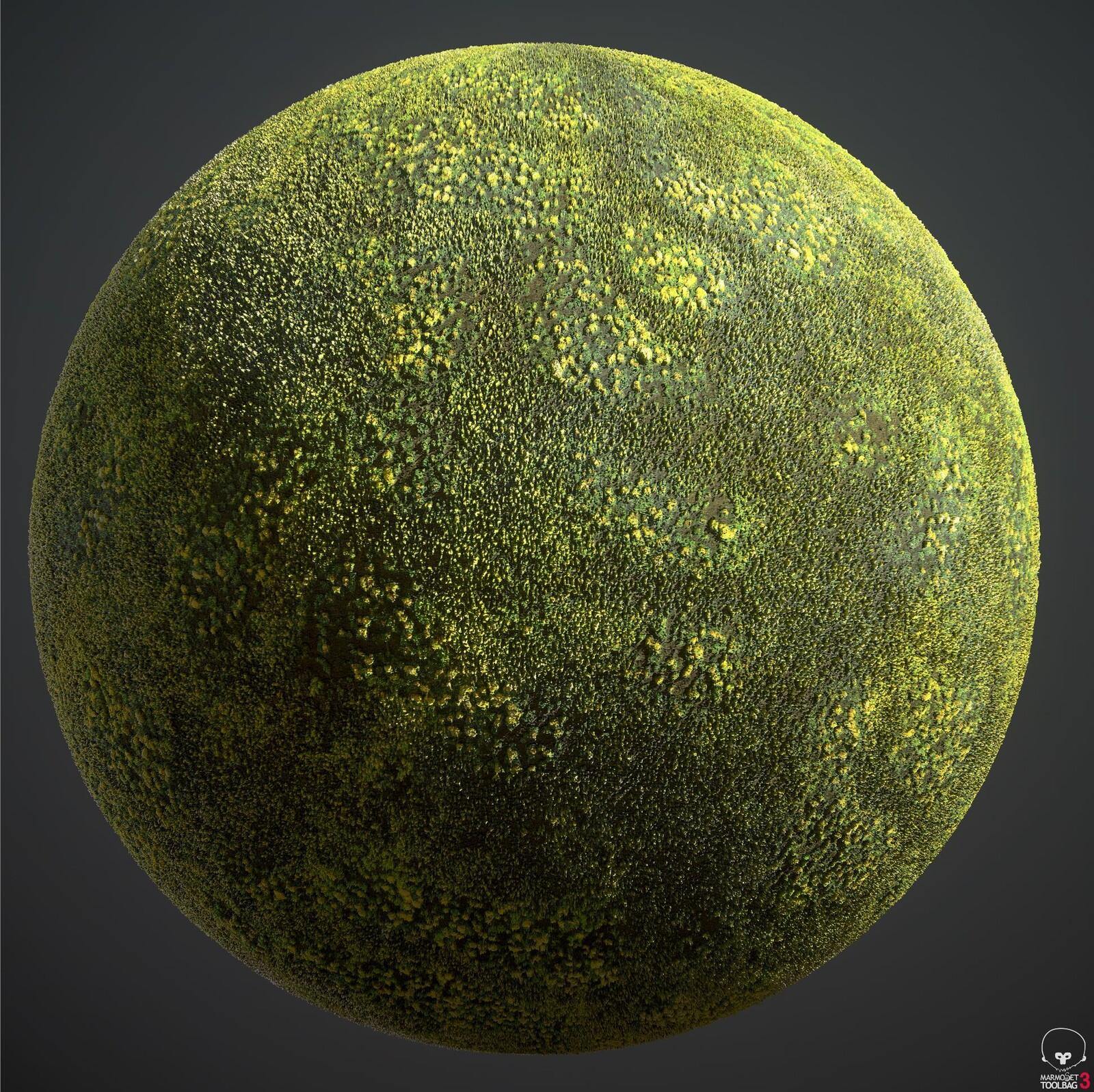 Moss Material (for cabin scene)