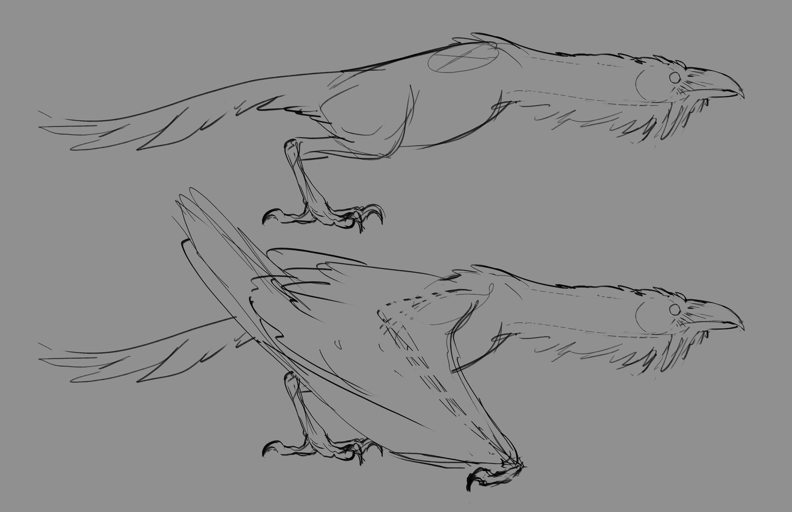 Bird Monster form animation reference
