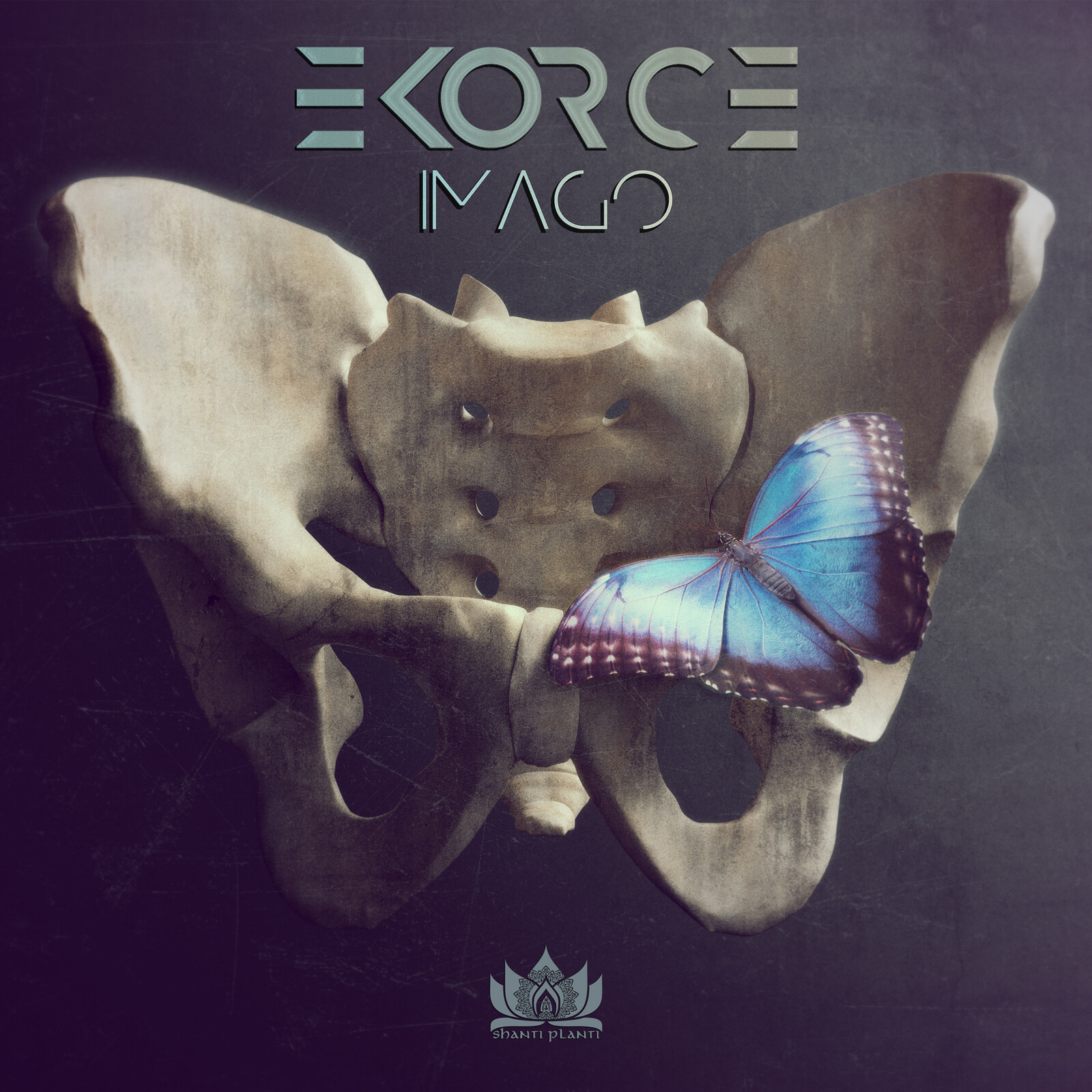 "Cover art for music EP ""Imago"" by Ekore"