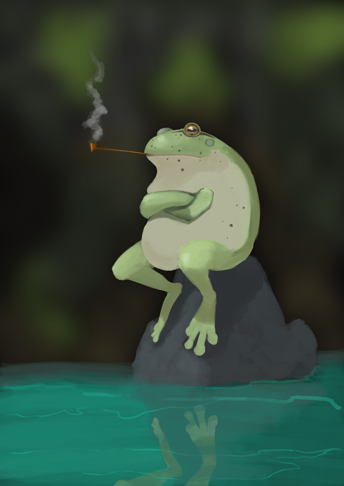 frog on the rock