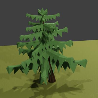 Caitlin g cooke conifers3