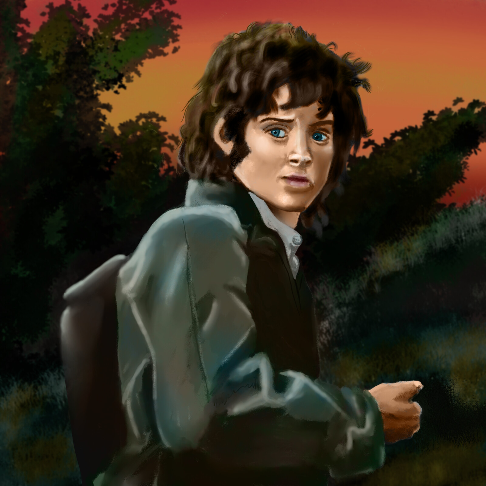 Mr. Frodo Baggins