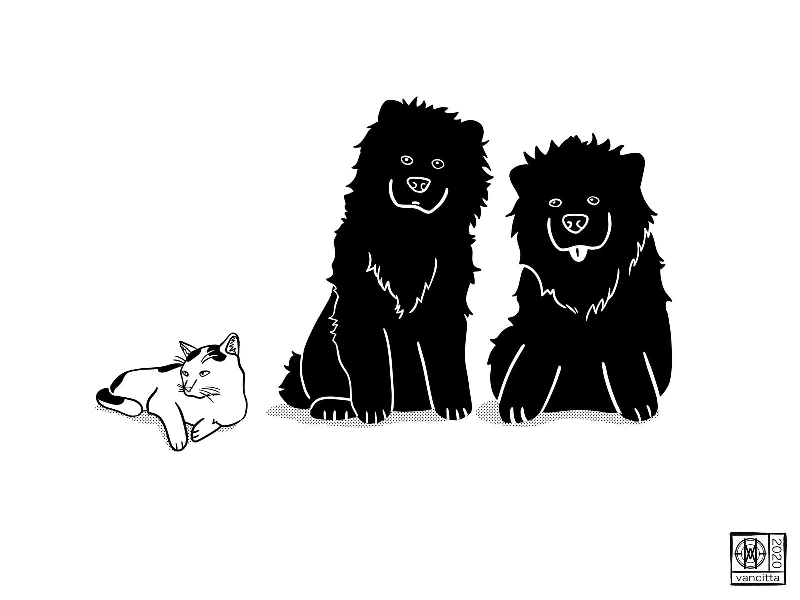 Elyza, Kiwi & Onyx