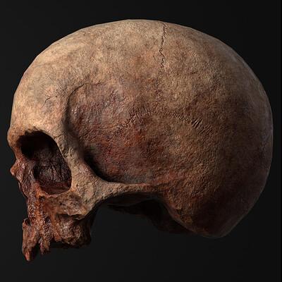 Rowan magennis skull sidefront sheet