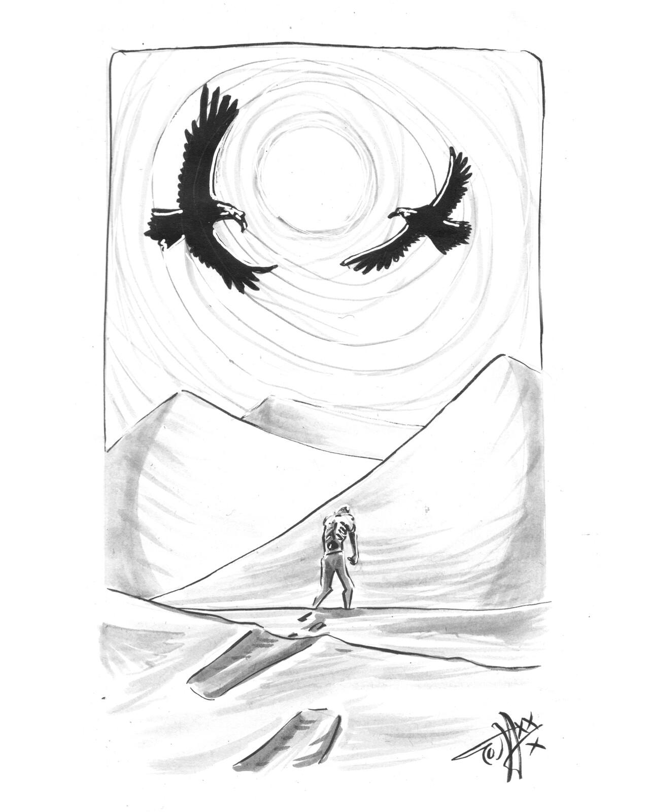 13-Dune