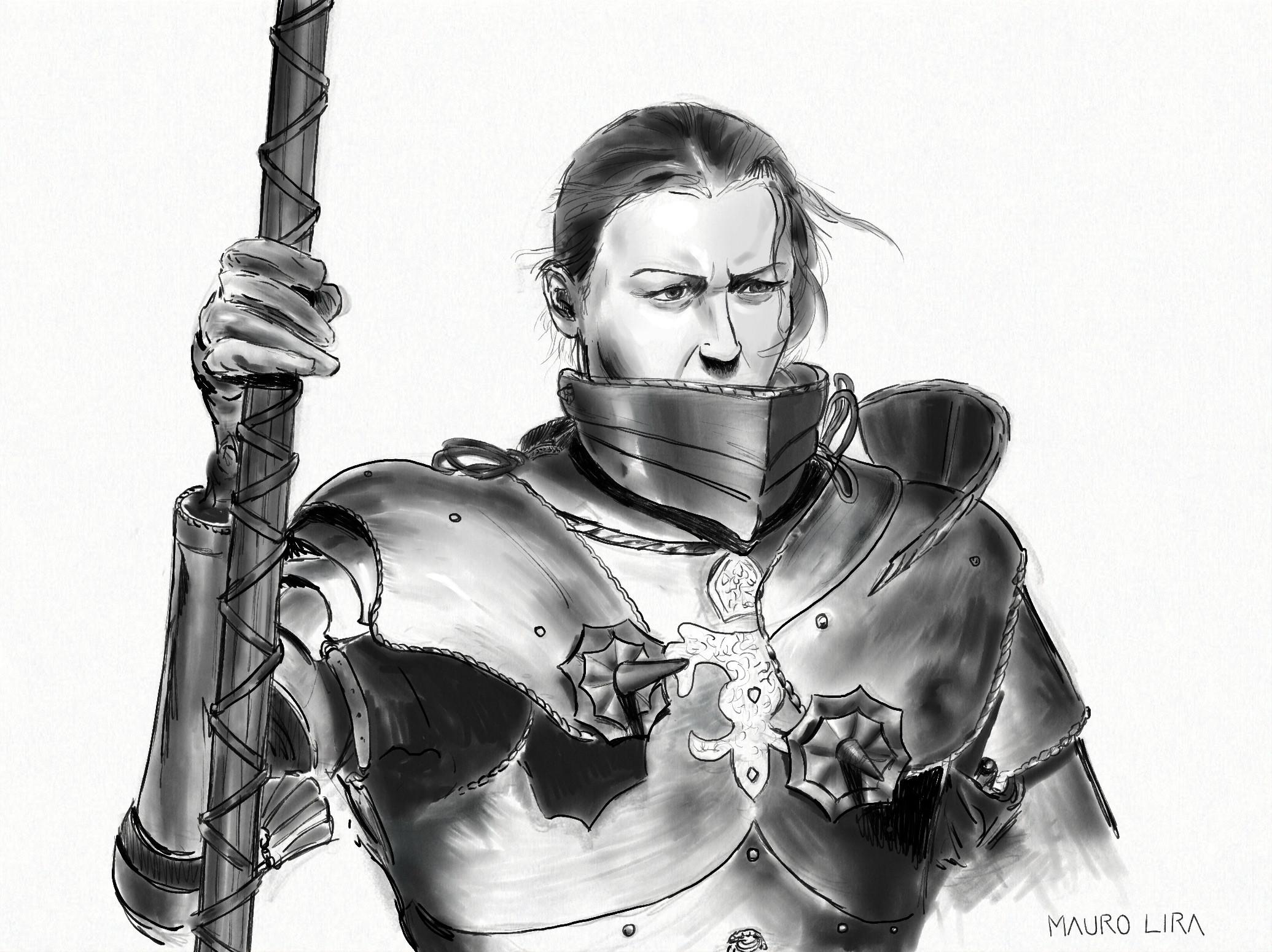 Day 14 armor