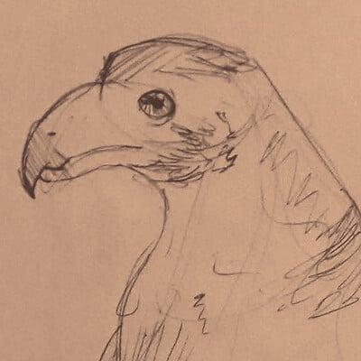 Luis dasilva bird3