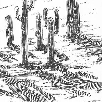Alessandro amoruso 13 dune