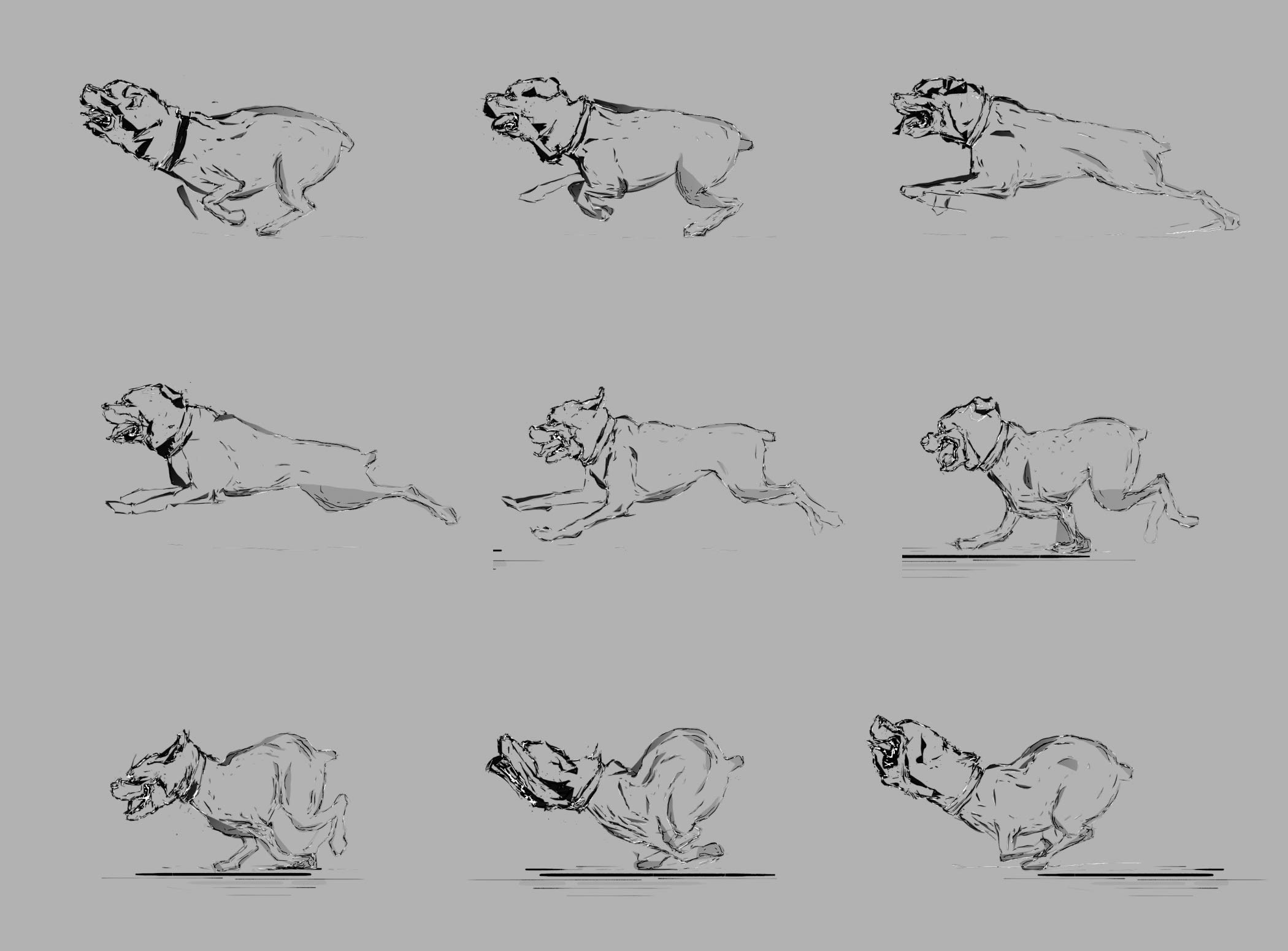 Animation of Rottweiler running cycle