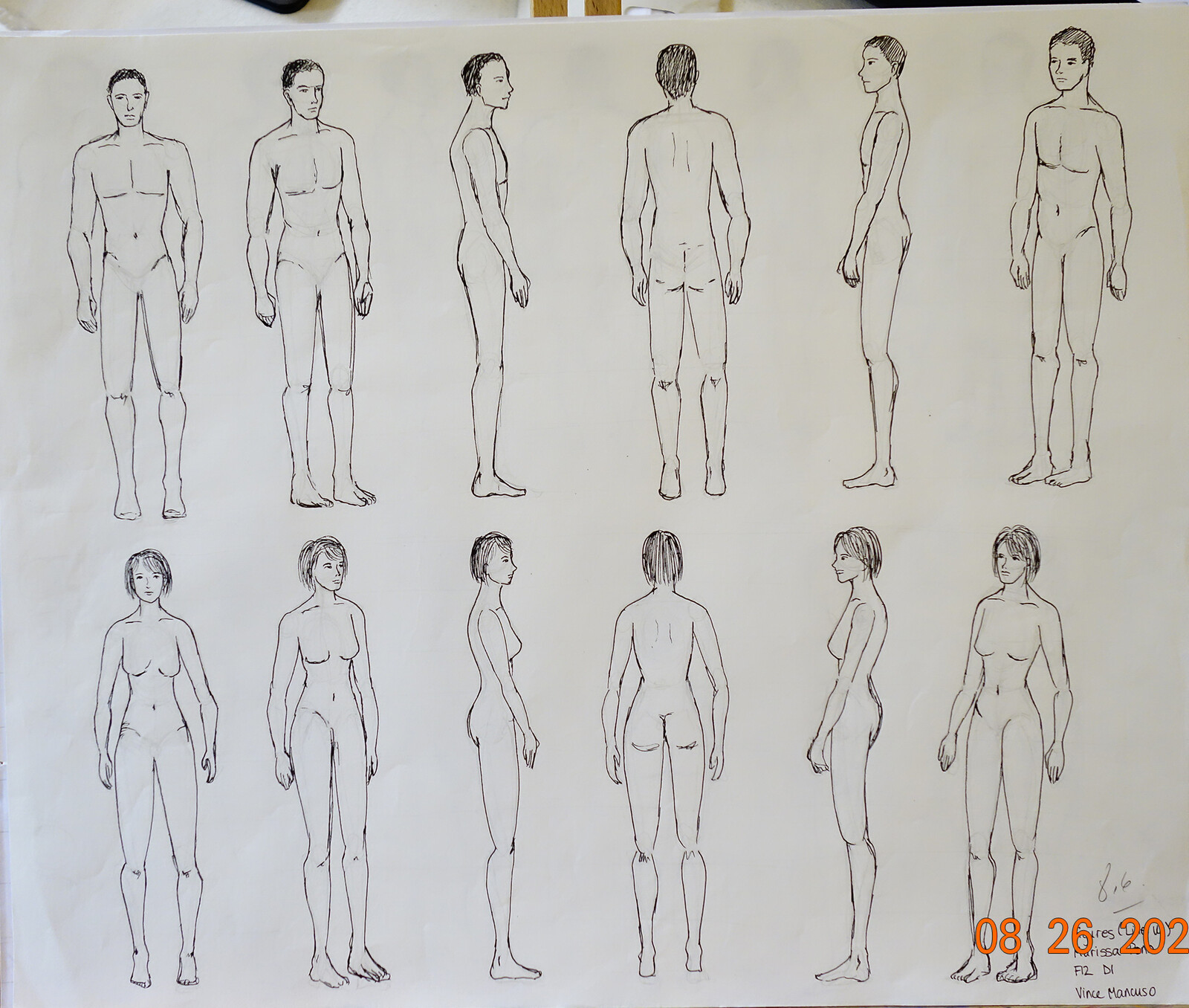Project 11: The line up, using the 8 Head proportions system of scale. Line only.