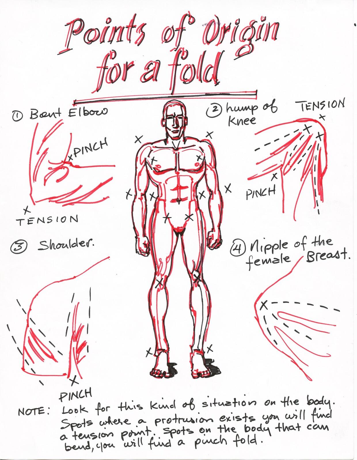 Where folds originate.