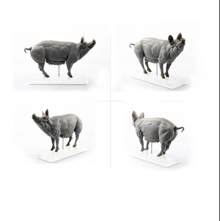 EVOLUTIO PVC - PIG