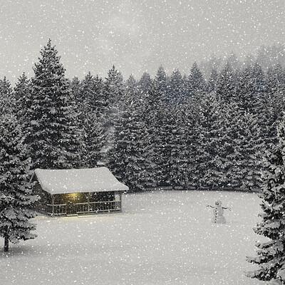 Jeffrey martinez 20201129tg heart of winter