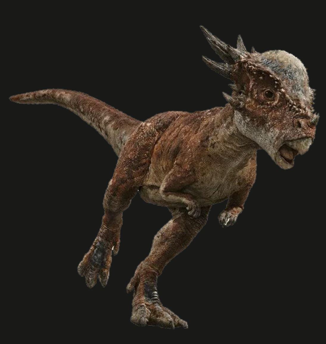 Stygimoloch marketing images( found in the net)