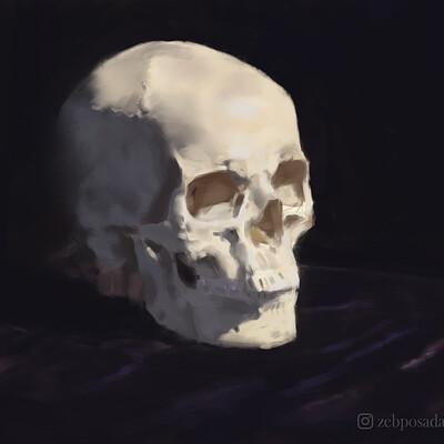Zeb posada zebposada skullchallenge final copy