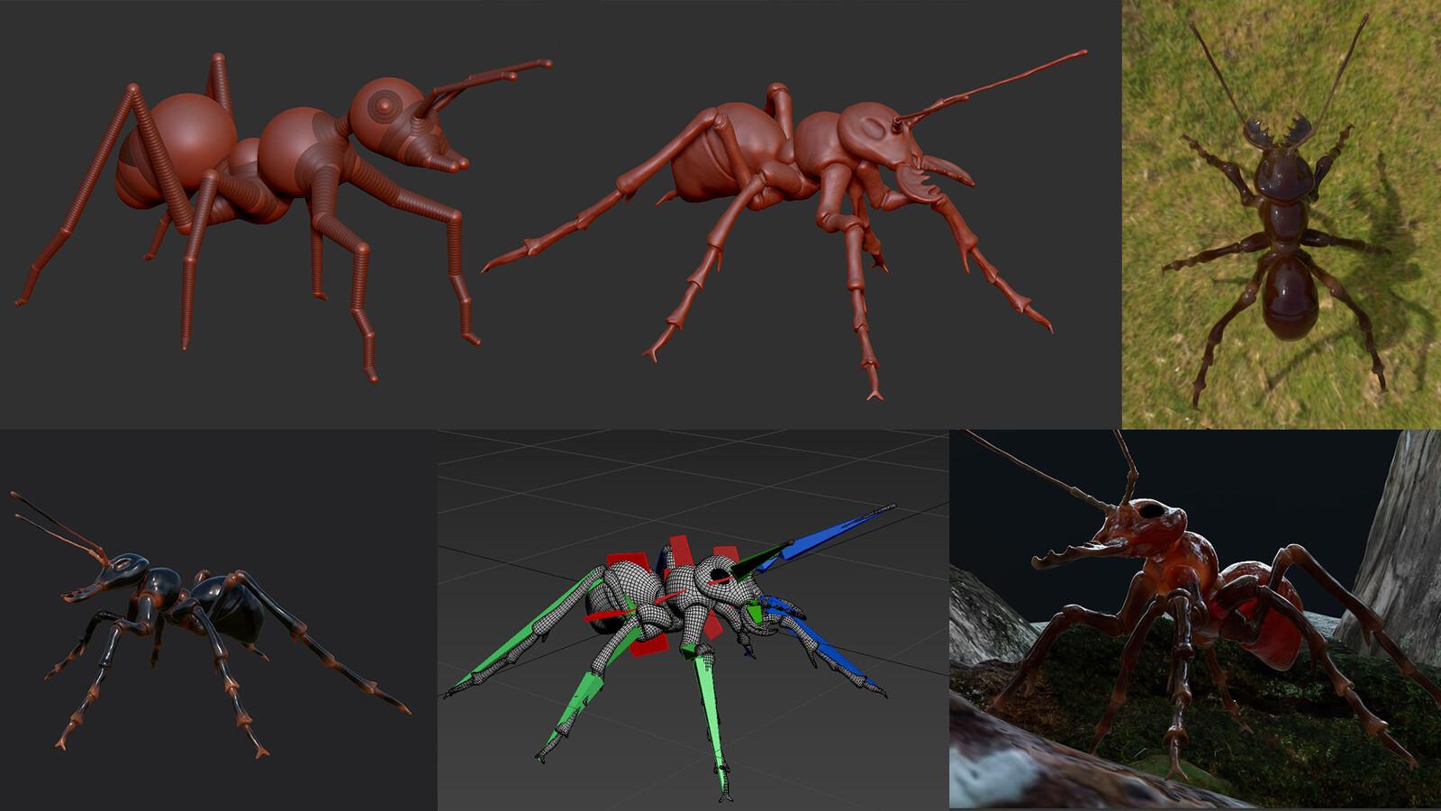 Ant Progress