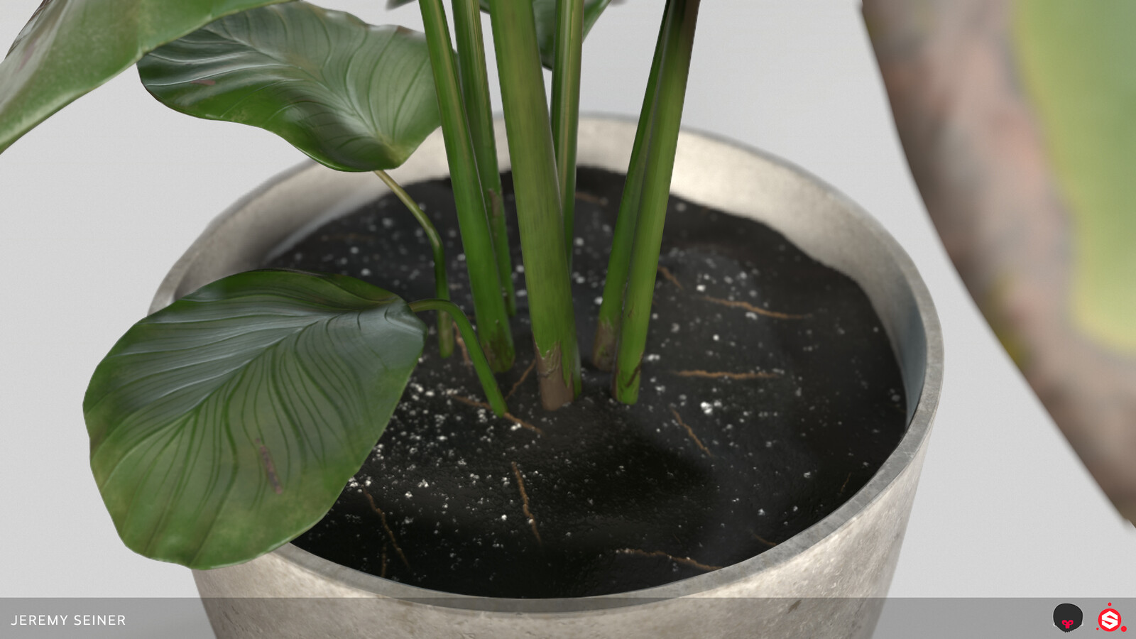 Closeup of base with soil and stems. Soil material created in Substance Designer.