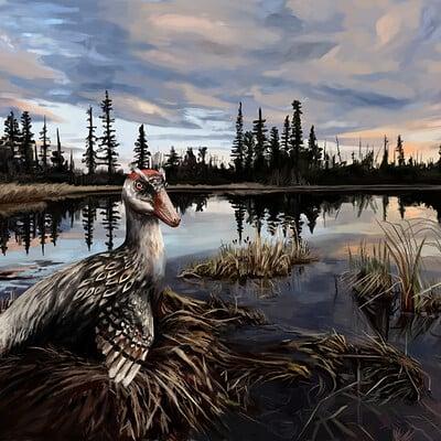 Brennan stokkermans stenonychossurus