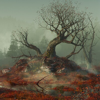 Martin frodl through the swamps beauty
