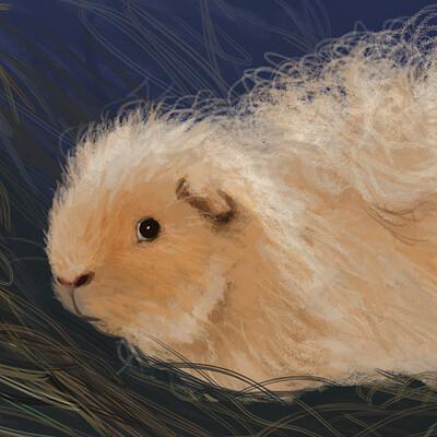K romanova kiwi portrait