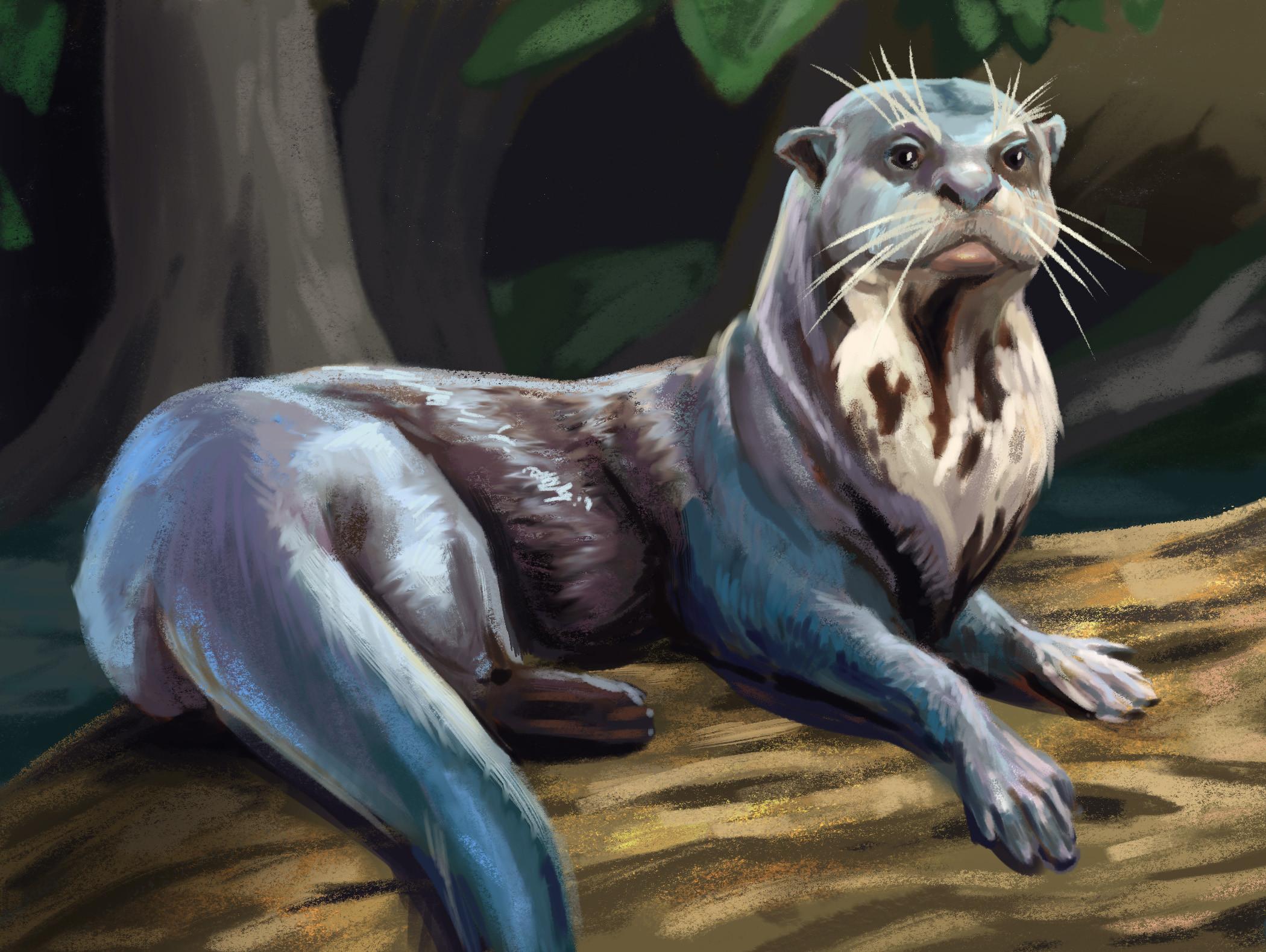 River Otter Study
