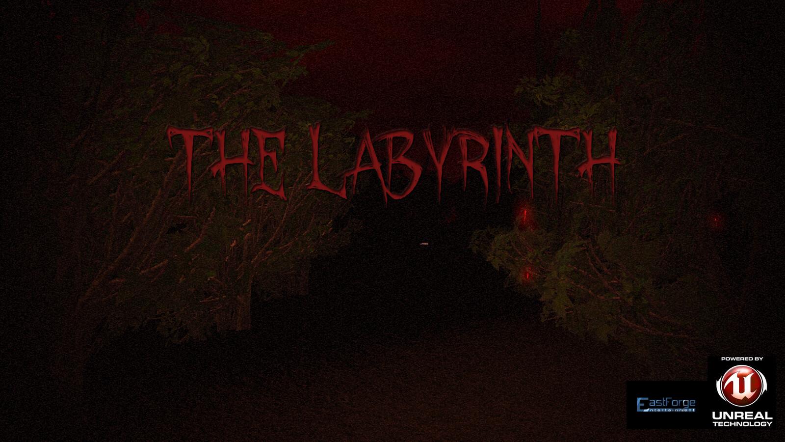 The Labyrinth (2013)