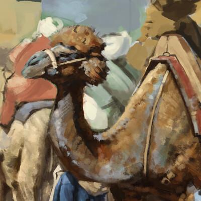 Pablo lara camellin15 copia