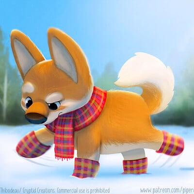 Piper thibodeau dp2977 dogbooties
