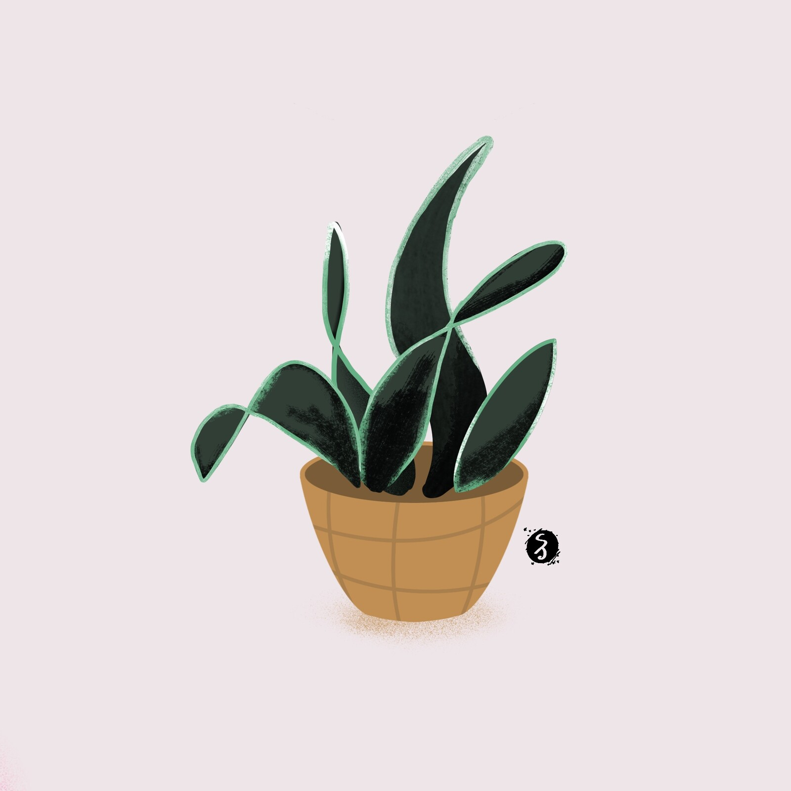 Tranquil Plant