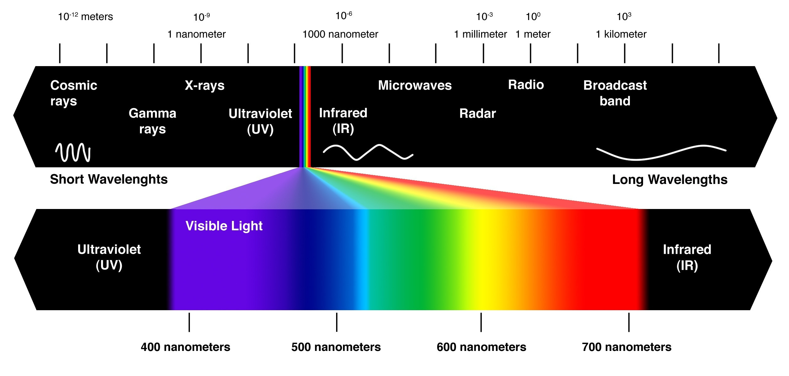 Visible light to the human eye.