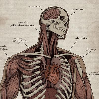 Kiana hamm autopsy