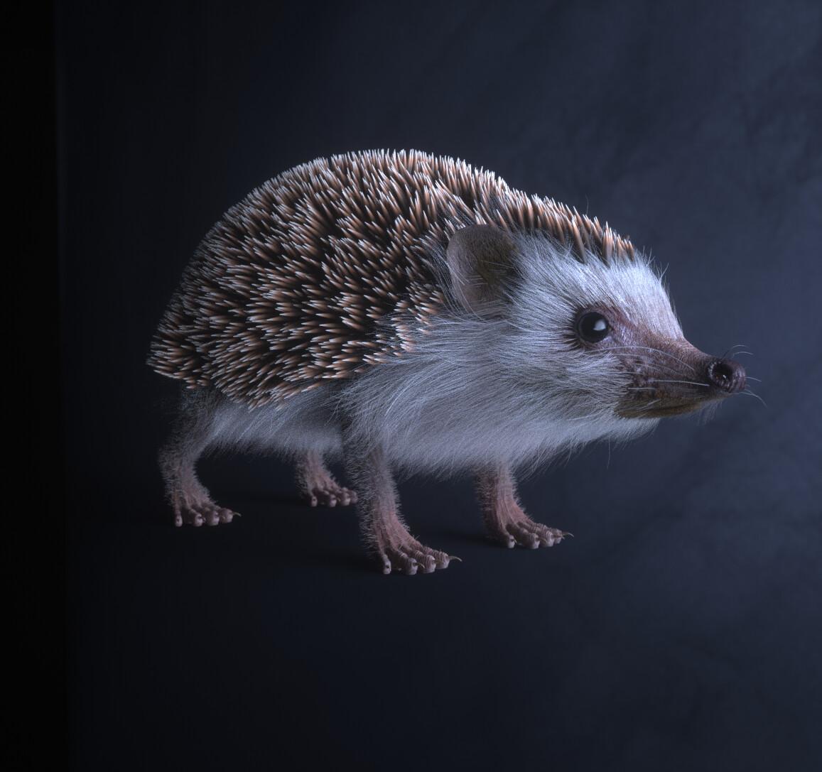 Hedgehog render test