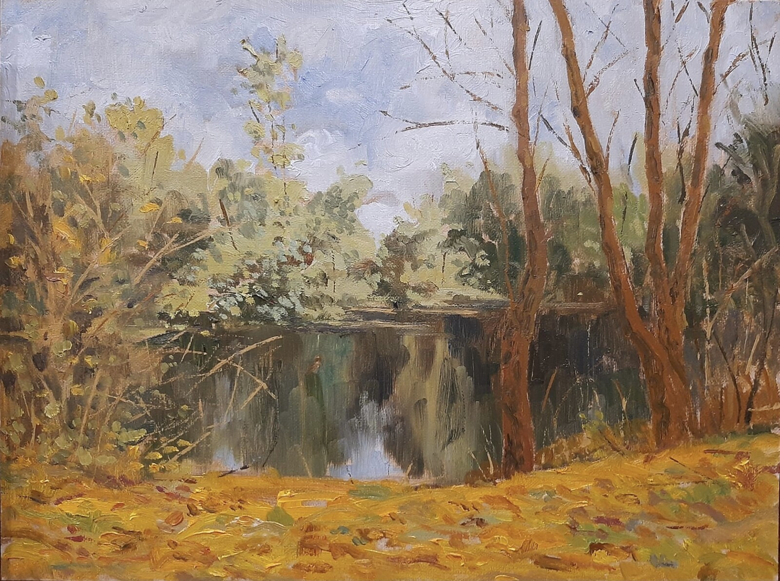 Autumn at the Tâmega River