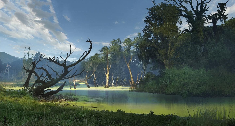 Swamp Concept
