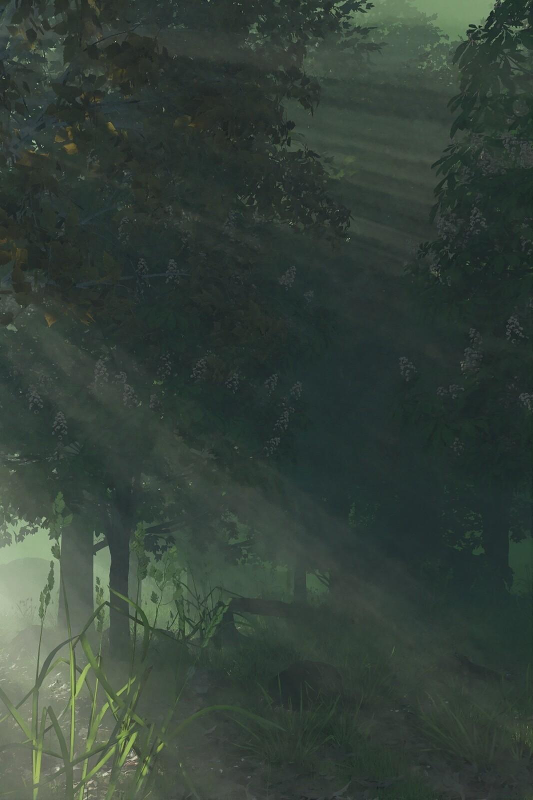 Forest reworked in Fotosketcher
