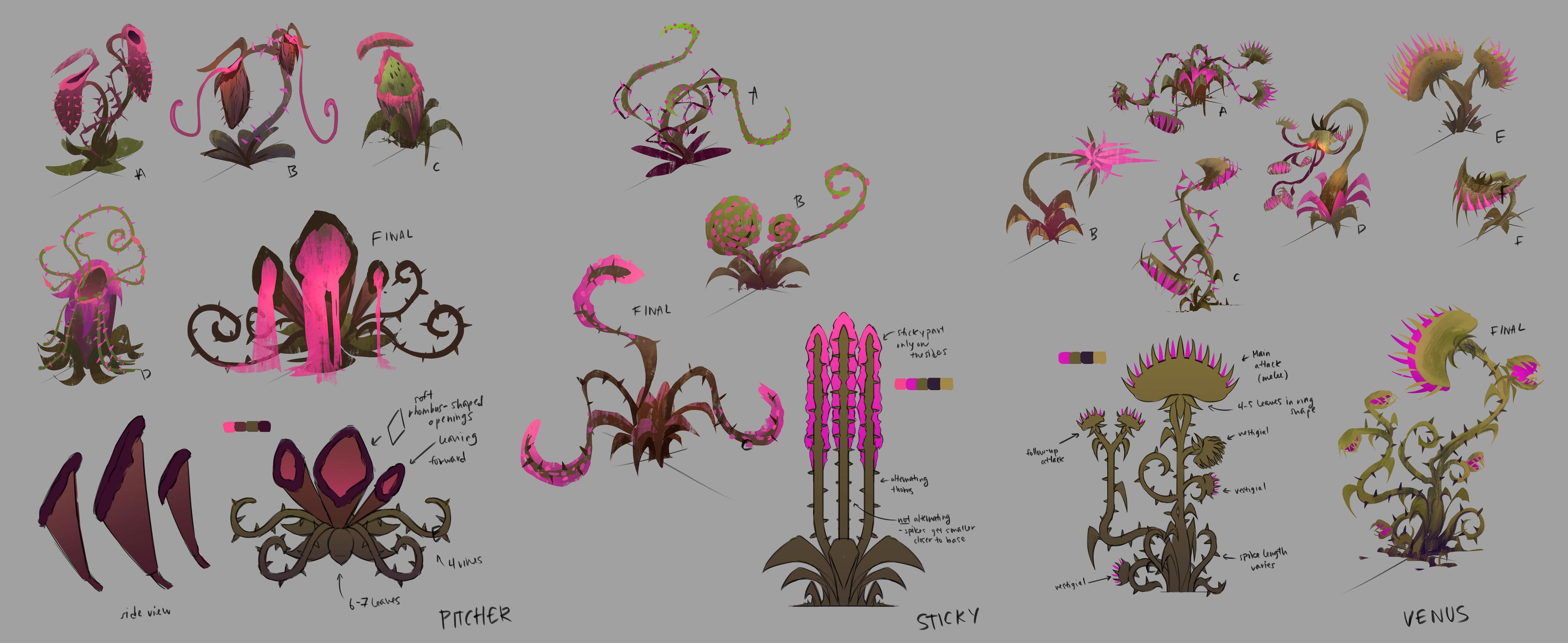 Plant explorations & callouts (3 main plant types)