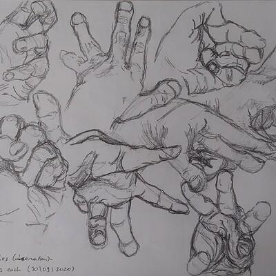 Tamar olchik hand studies