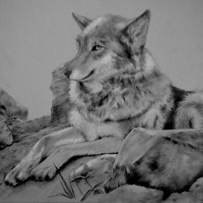Waterlili2020 wolf orig